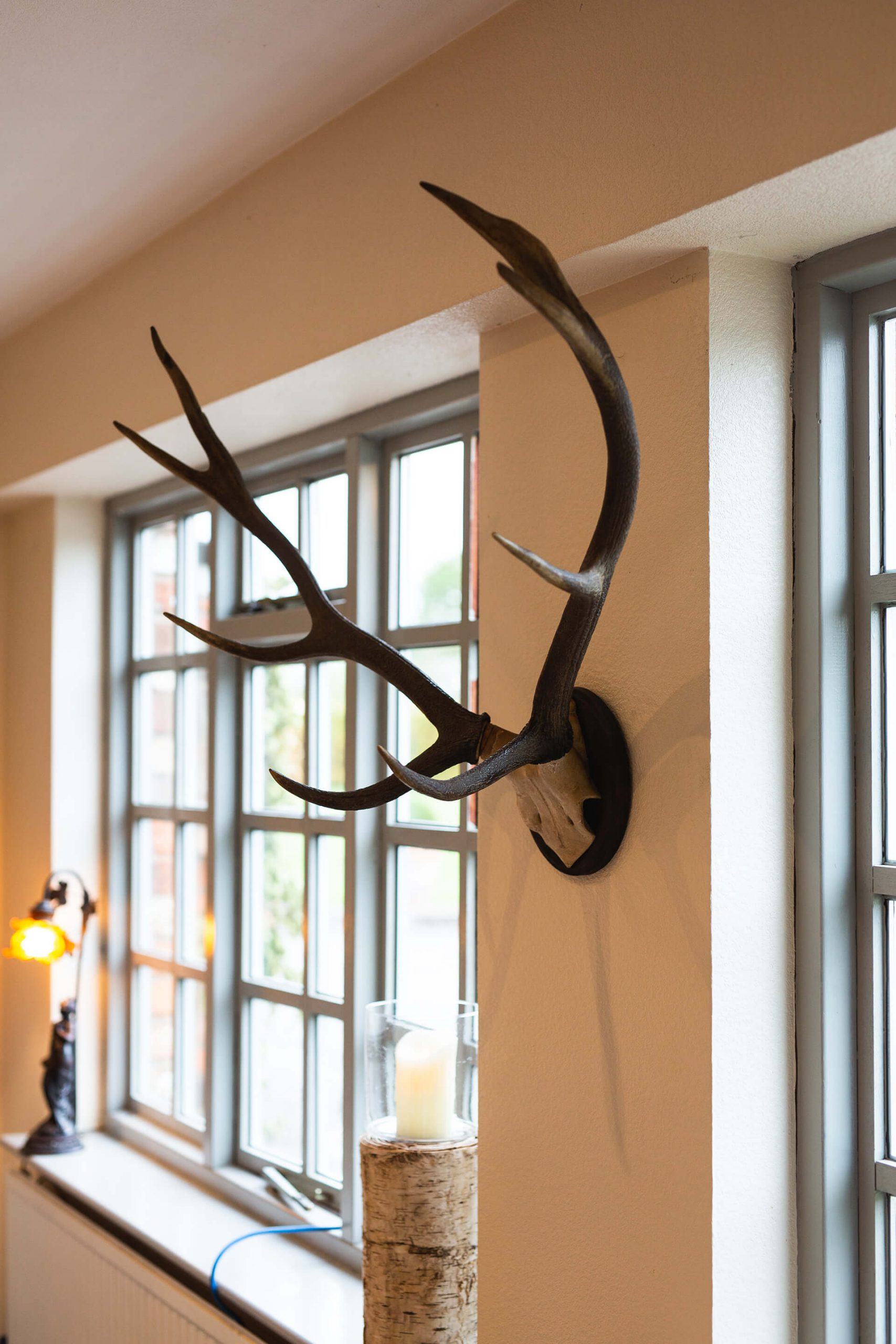 Antlers hanging on a wall